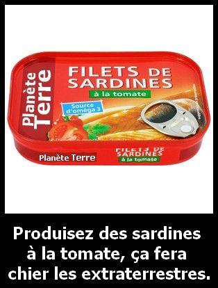 Sardines___la_tomate