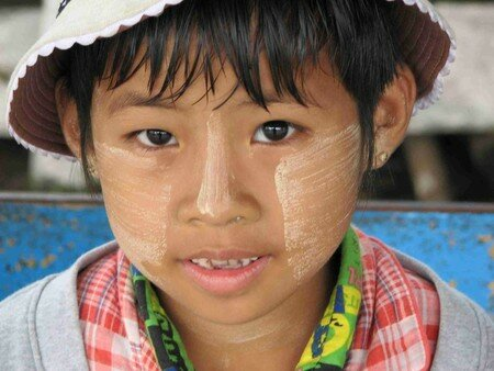 Birmanes__Birmans__35_