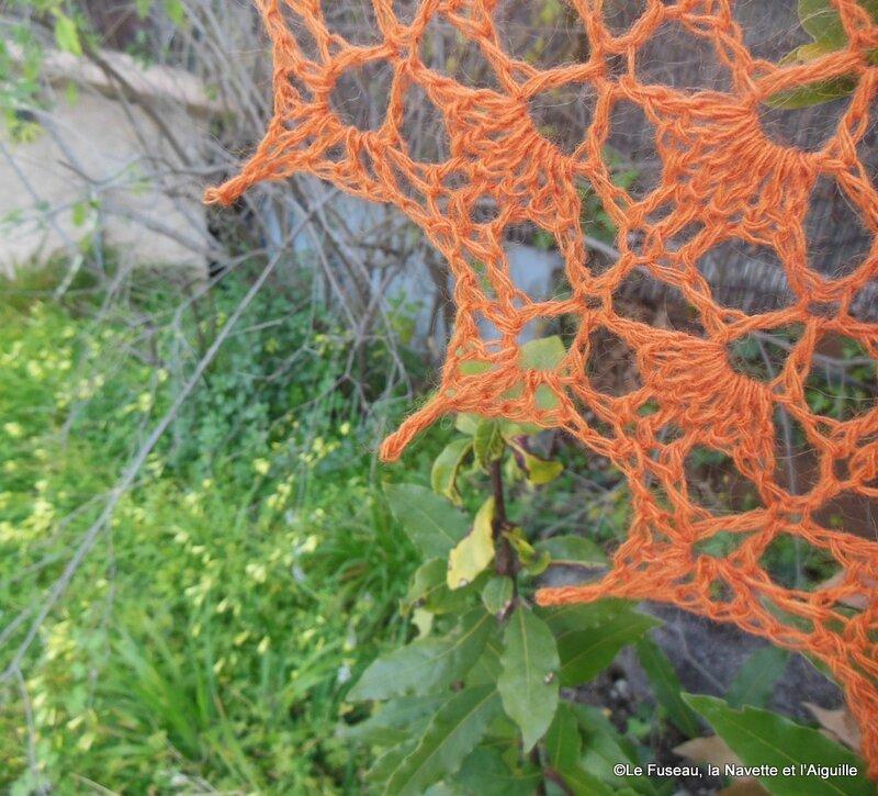 south bay swhalette orange 33