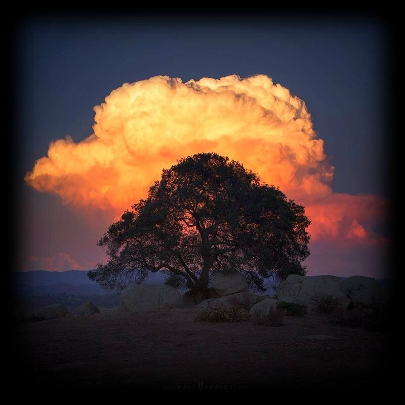 Michael Shainblum Photography,