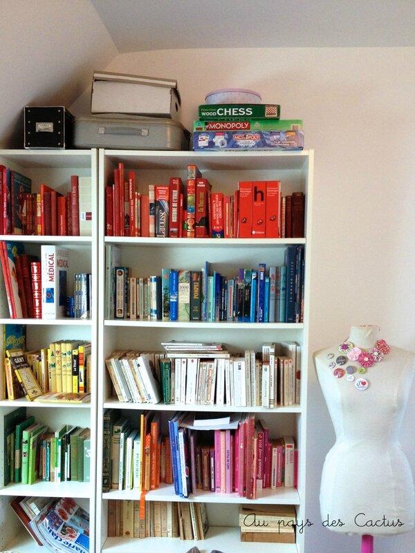 Bibliothèque livres classés par couleur Au pays des Cactus 1 copy