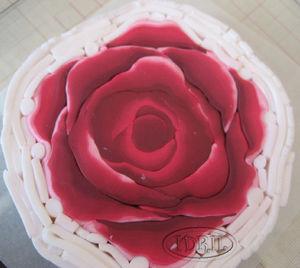 rose_avant_reduc