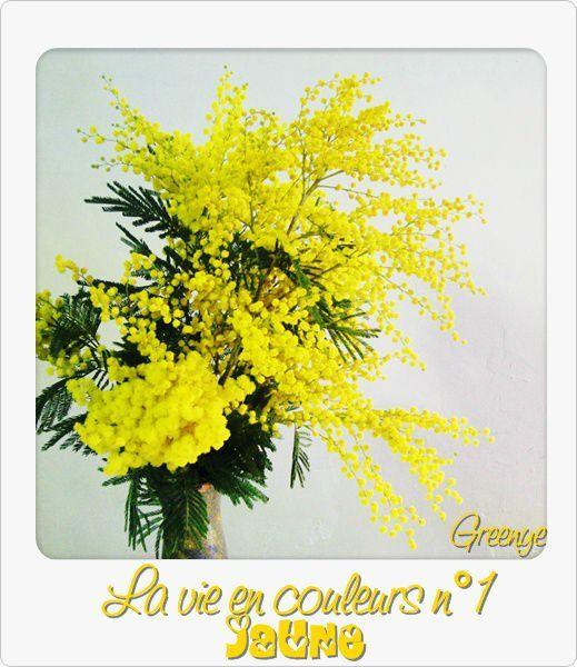 01 jaune'''