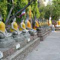 ayutthayarangéebouddhas