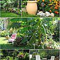 Maisons et Jardin1