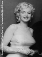 1955-01-07-NY-Cocktail_Party-073-1-marilyn_monroe_CP_20