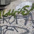 Quand les graffitis deviennent écofriendly...