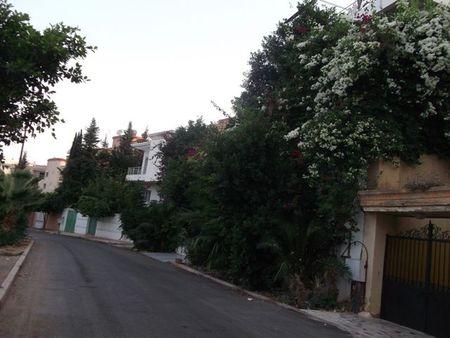 30Une rue fleurie du quartier d'Azor