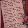 Célinescrap, journaling