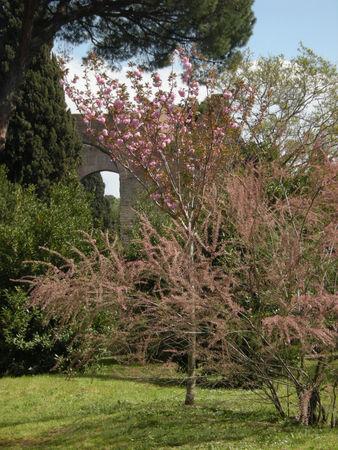 Rome_avril_2009_118_copie