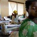 Pays d'animaux sauvages: la destruction des femmes congolaises