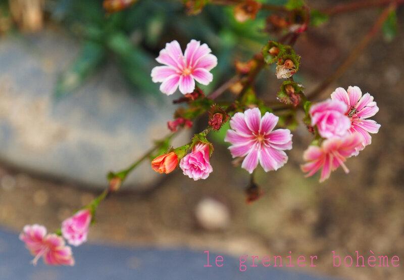 PicsArt_03-14-09