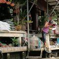 thailande 2008 264