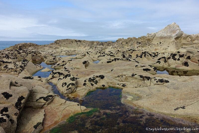 îles grandes rochers