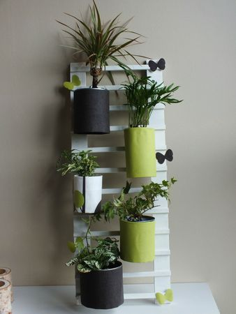 diy d co r cup faire une chelle pour accrocher des plantes st phanie bricole. Black Bedroom Furniture Sets. Home Design Ideas