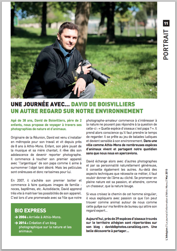 Capture d'écran de l'article