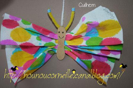 papillon8