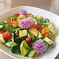 Salade haute en couleurs