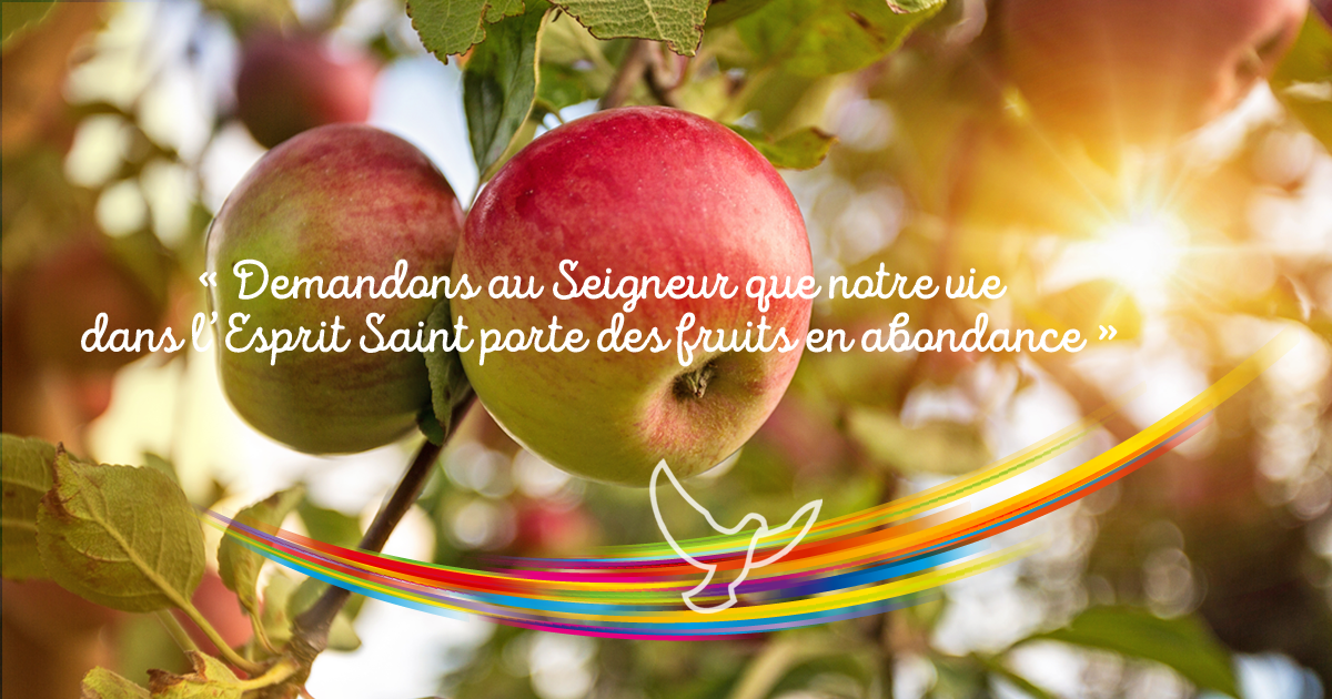 PENTECÔTE : Que sont les dons de l'Esprit-Saint ? 2/2 - Fédération des  Associations Familiales Catholiques du Val de Marne (et du 93)