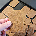...speculoos sans oeufs, facile, rapide et inratable...