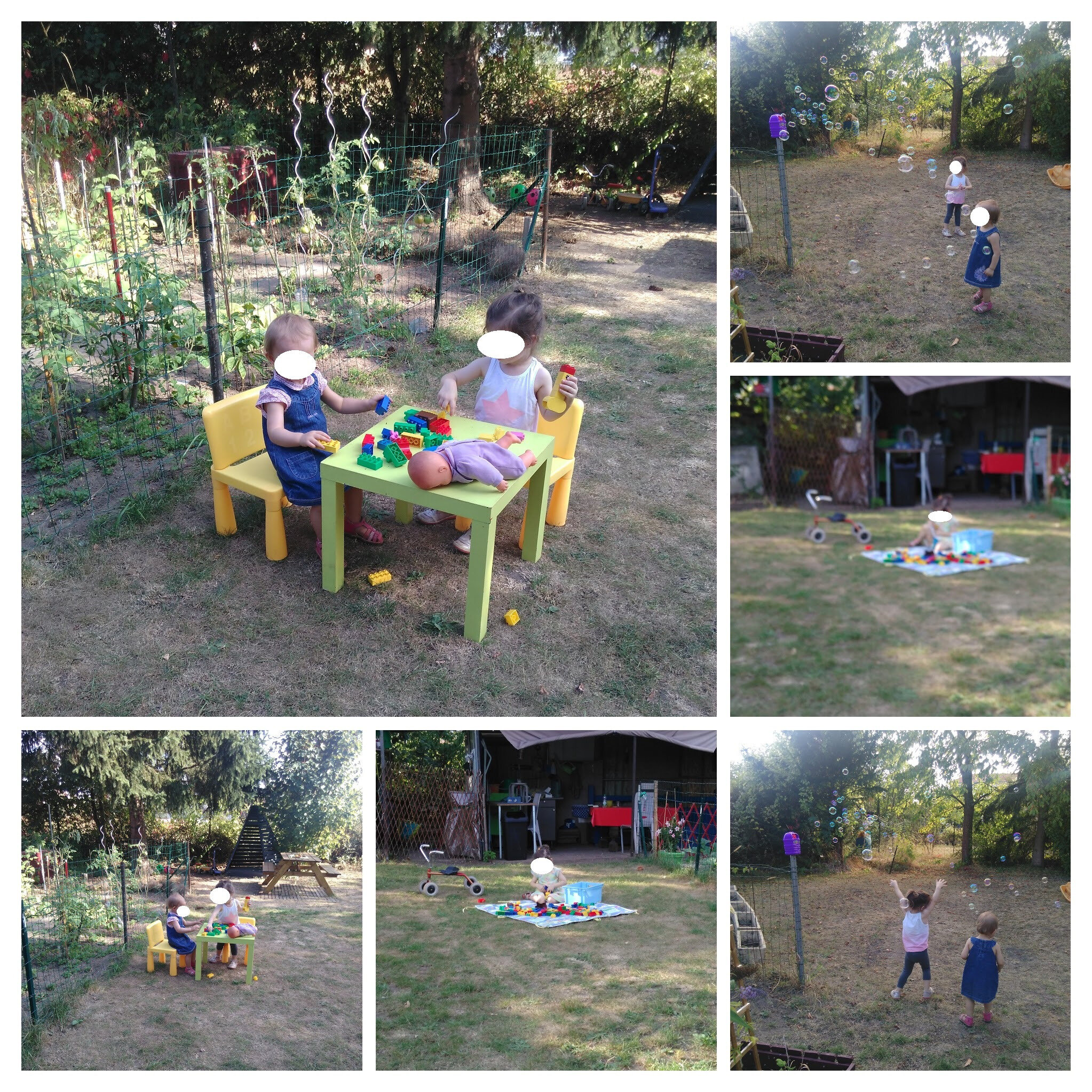 IMG_20160901_181051-COLLAGE