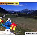 Plateau des Glières : Schtroumpf résistant (74)