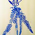 insectnov19