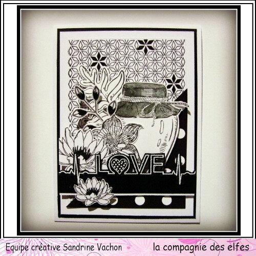 Sandrine VACHON carte N&B dt LCDE (1)