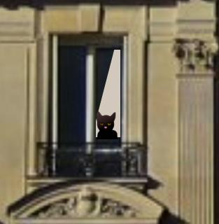 Le chat derrière la fenêtre2