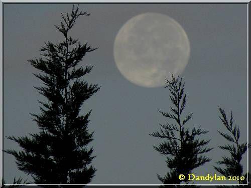 lune101024w