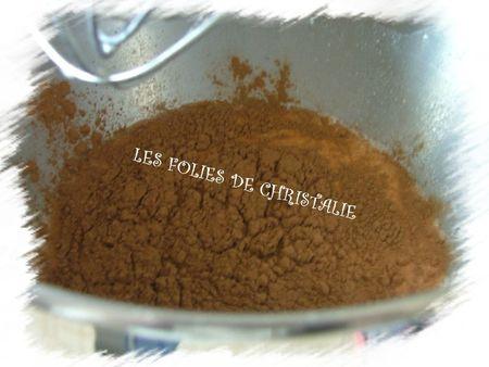 Yaourts emprésurés au chocolat 1