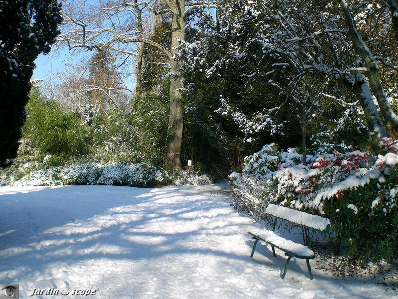 Banc sous la neige au jardin botanique de Tours