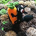 Les carottes du jardin