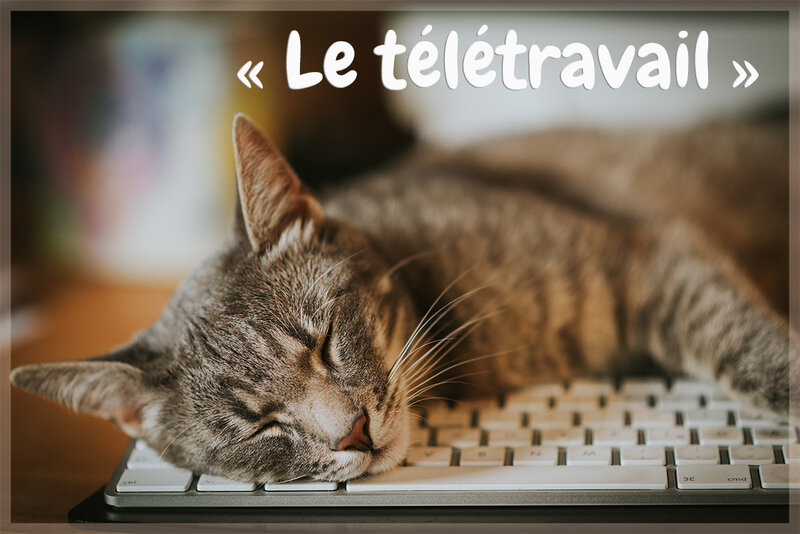carte-virtuelle-teletravail