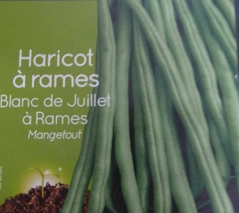 haricots rames