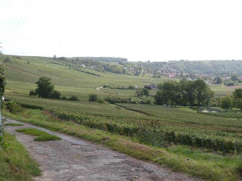 les coteaux de la Marne (4)