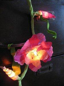 fleurs_rosesGP