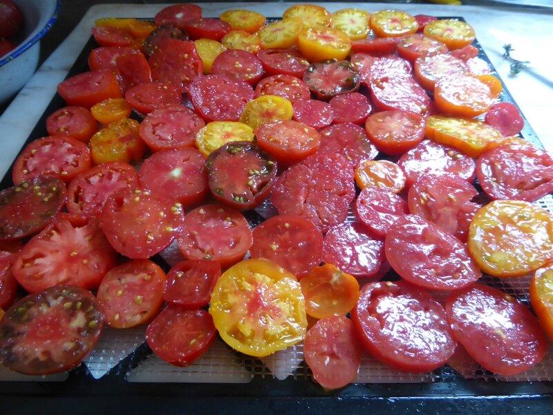 30-tomates séchées (3)