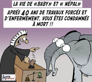 baby et Népal