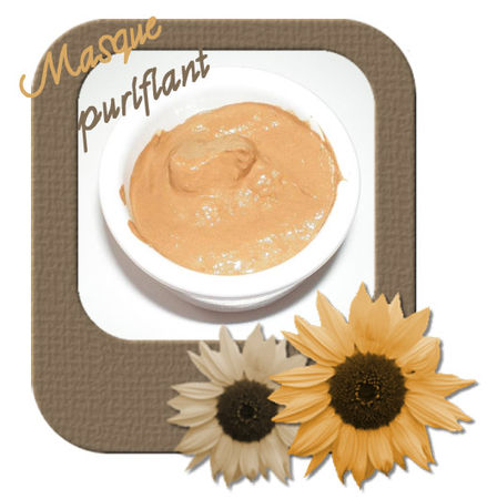 masque_purifiant_copie