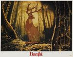 bambi_photo_us_1980s_005