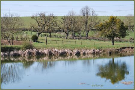 canalblog 21450 Fontaines en Duesmois 2012 04 DSC_0494
