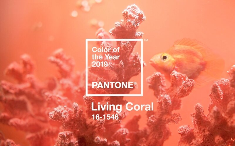 pantone-color-of-the-year-2019-is-living-coral