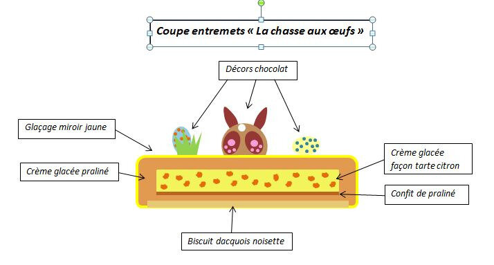 coupe chasse aux oeufs