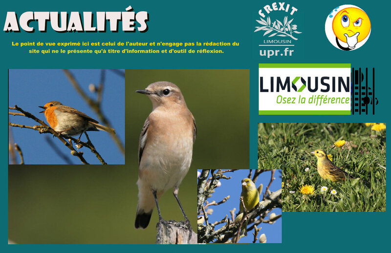ACT LIMOUSIN PIAFS