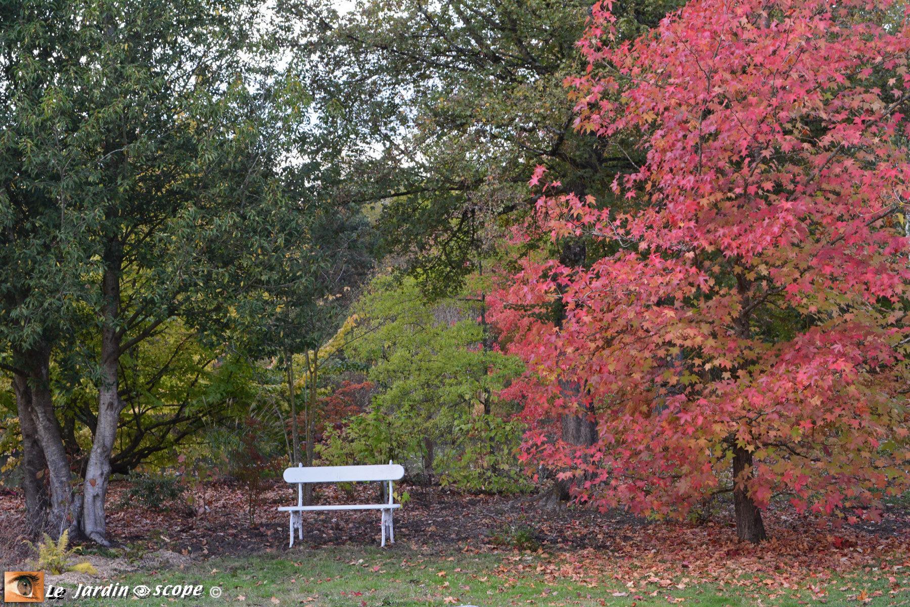 petit banc blanc dans le jardin de Berville