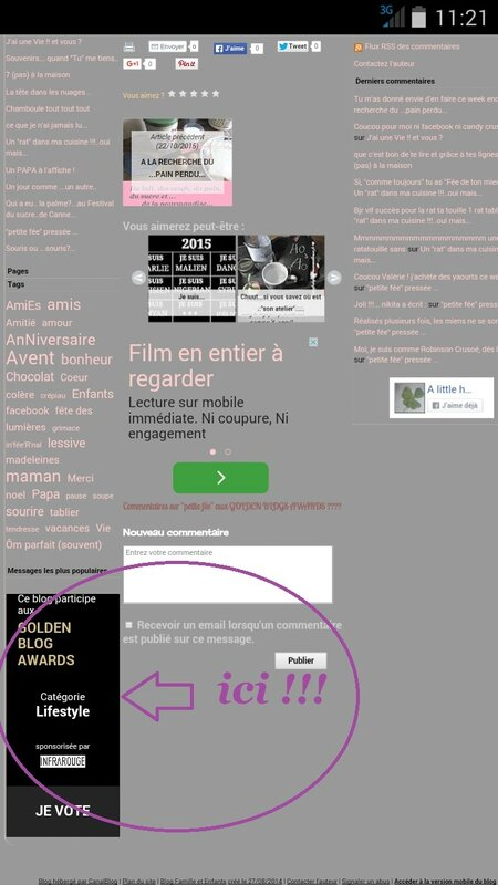 golden blog mode d emploi 4
