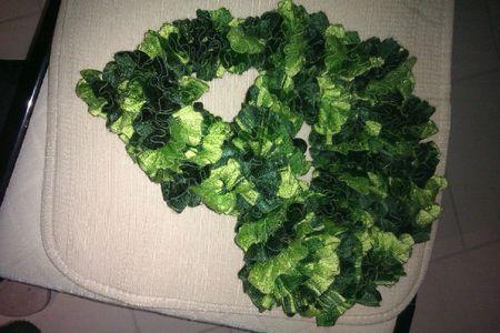 écharpe verte (rebaptisée salade