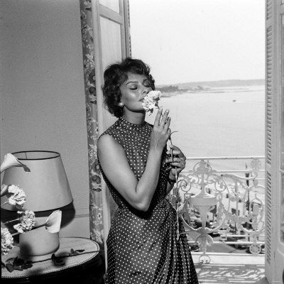 WA1928487_Italian_Actress_Sophia_Loren_Smelling_a_Flower_in_Her_Hotel_Room_at_the_Cannes_Film_Festival_Affiches