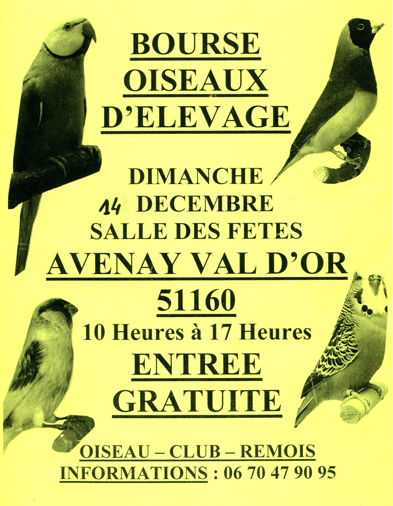 BOURSE AVENAY VAL D'OR